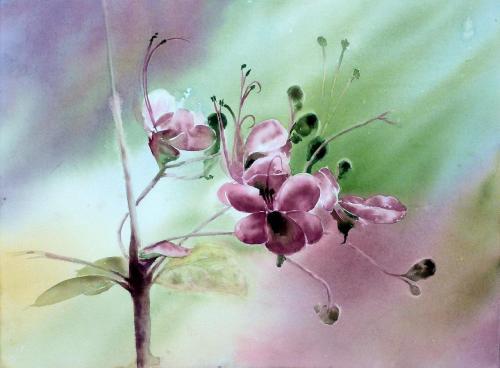 186-Fleur de la chance-(56x42)