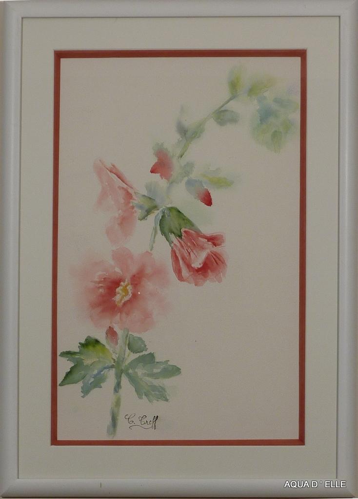 73-Roses trémières roses-(42x61)